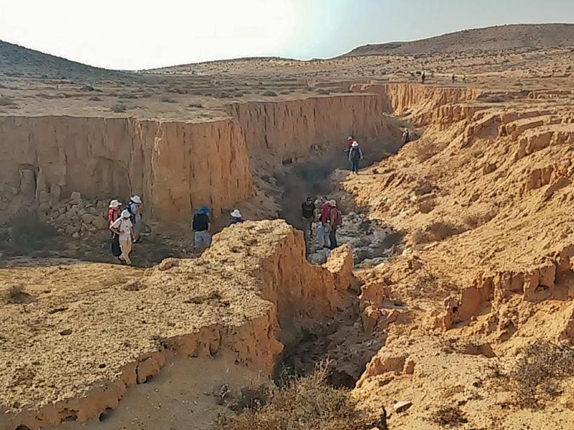 Negev-dune-field-sediment.jpg