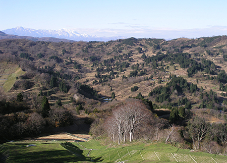 cold-temperatures-trigger-slow-moving-landslides-Japan-clay-active-autumn
