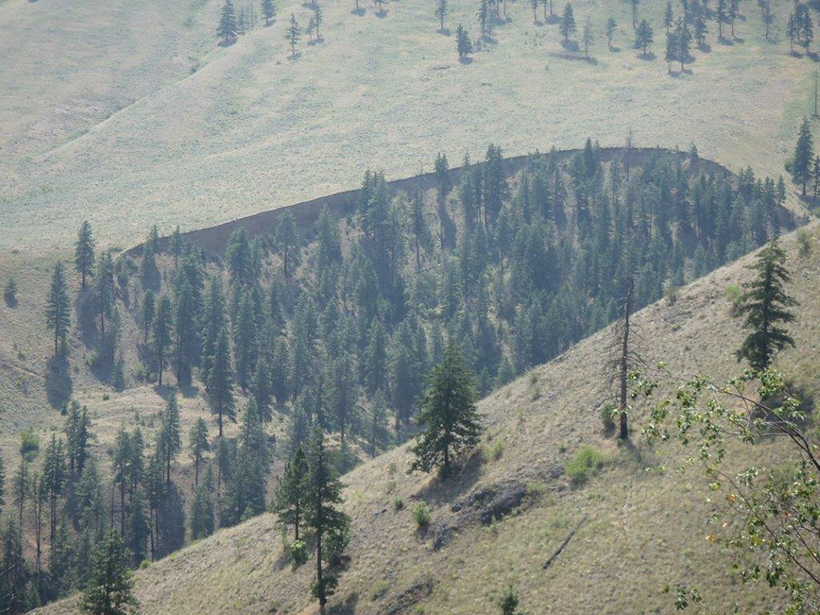 Spencer Canyon landslide tied to earthquake
