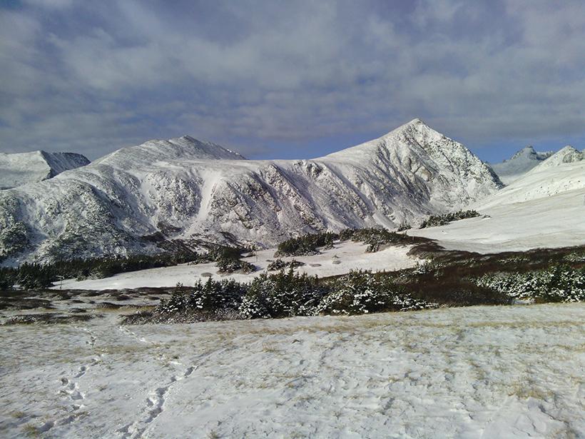 Niwot Ridge Long Term Ecological Research site, Boulder, Colorado