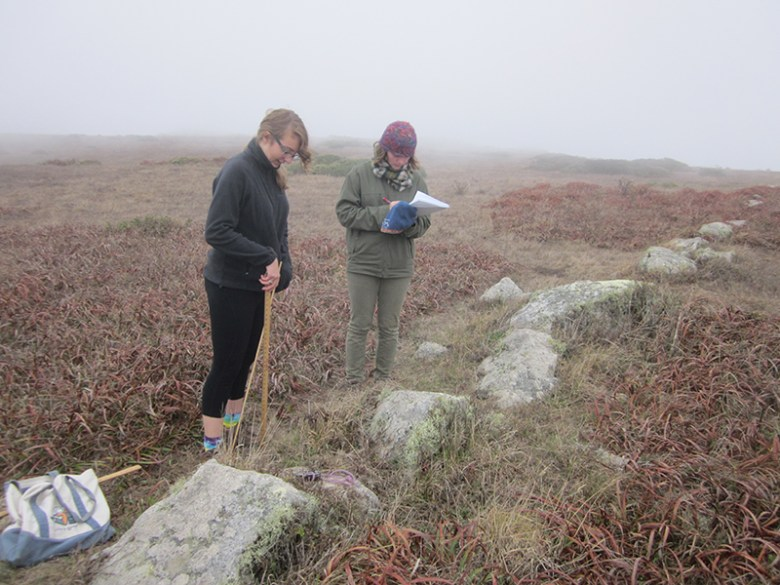 Students use surveying techniques to record data on an archaeology project