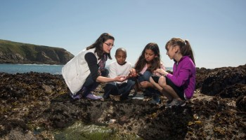 Geoscientists engage with nonscientists of all ages