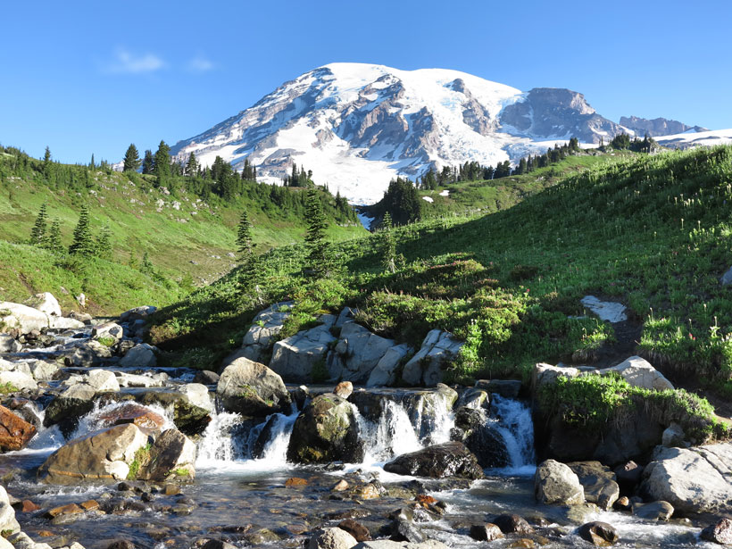 A view of Mount Rainier National Park in summer