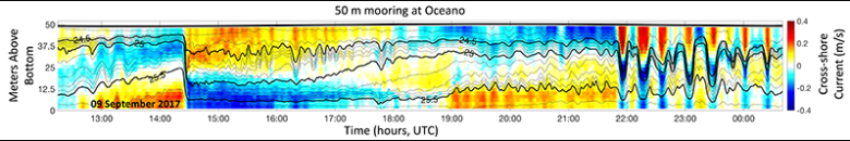 Time series of density anomaly and cross-shore current as a function of depth at the Oceano array.