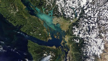 Satellite image of south Vancouver Island