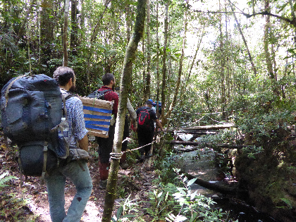 Installing the seismometer network required the team to hike to remote locations, including the jungles in the Maliau Basin.