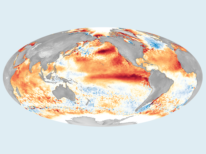 A global map of ocean temperature during the 2016 El Niño event