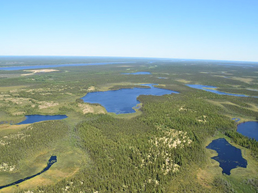 The landscape in James Bay, Quebec, Canada, consists of hydrologically interconnected forests, wetlands, rivers, and lakes.