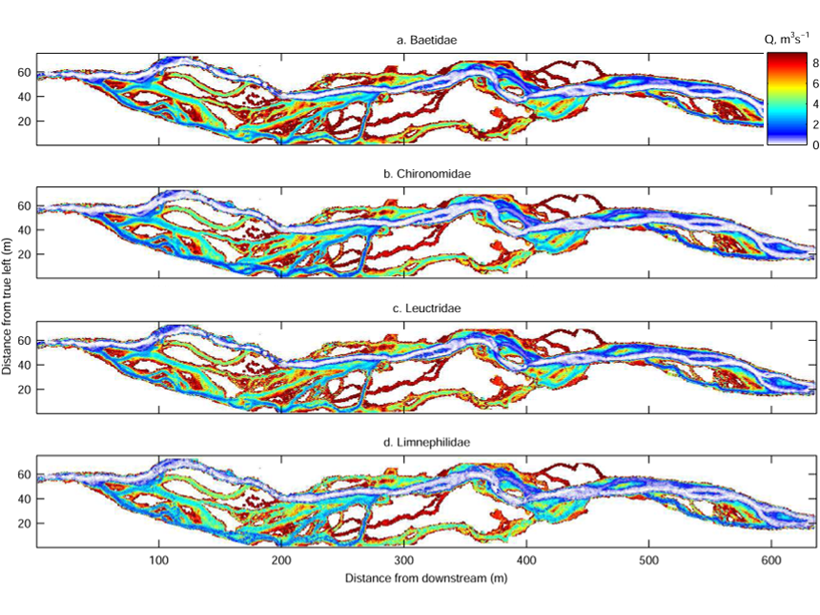 Four charts showing optimal habitats in the floodplain for different stream insects.