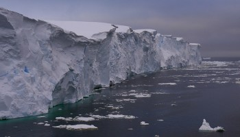 Glacial cliff towers above an icy sea