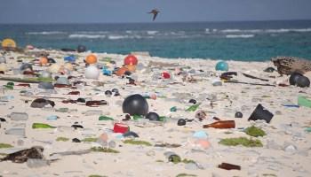 Beach strewn with plastic and glass debris