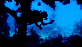 A scuba diver swimming in profile