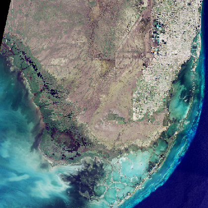 A satellite image of South Florida shows the Everglades in brown flowing to the southwest, next to the eastern coastal metropolis of Miami, in white.