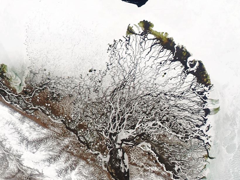 Satellite view of the Lena River delta in June 2019