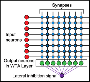 """Circuit diagram of artificial neural network implementing a """"winner-take-all"""" machine learning algorithm"""