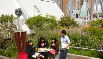 Four students on a rooftop patio surrounded by vegetation