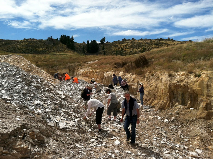 Wide image of a group of researchers looking through slabs of rock in a ditch in a dry paddock