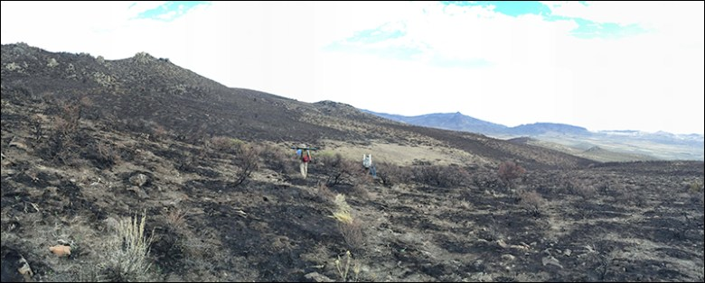 Two researchers carrying equipment hike through a charred hilly landscape