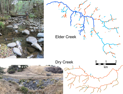 Photos of and diagrams depicting flow conditions on Elder Creek and Dry Creek in the Eel River basin in California