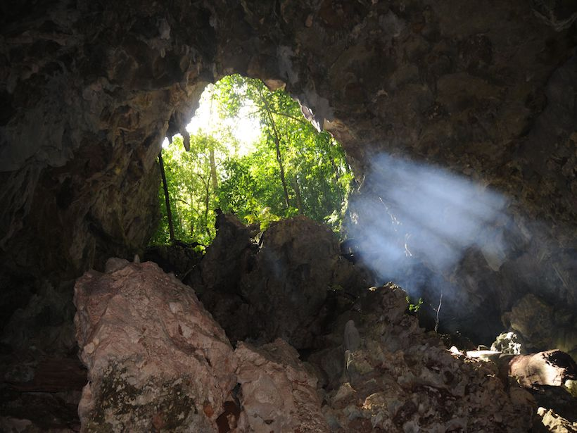 Cave entrance with vegetation in background