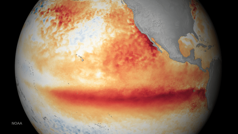Visualization of the Pacific Ocean showing how sea surface temperatures differed from normal in October 2015