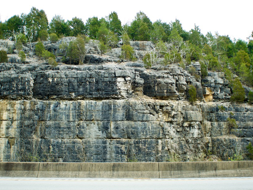 A roadcut in Kentucky reveals layers of Camp Nelson Limestone