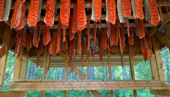 Salmon in a smokehouse