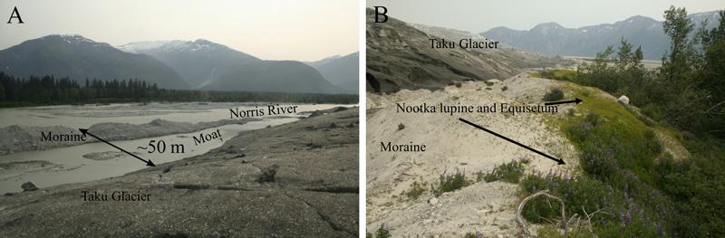 Photos of scenery, including the moraine, near Taku Glacier