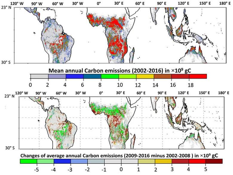 A multi-panel figure of biomass maps