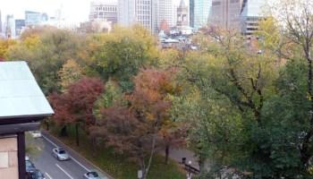 Trees along Boston's Commonwealth Avenue Mall display fall foliage