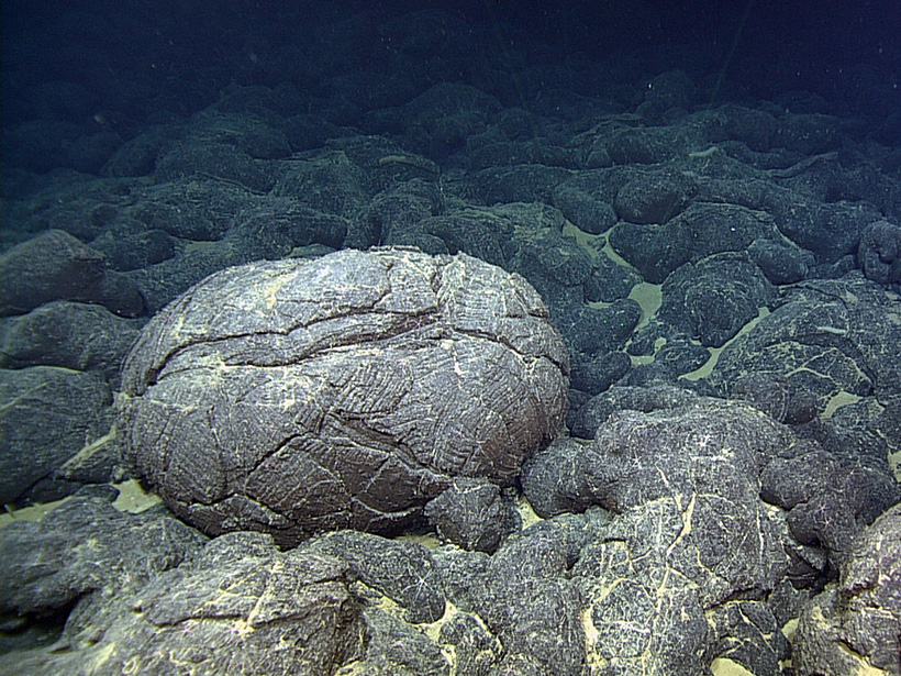 Lava that erupted from the Juan de Fuca Ridge formed these pillow and sheet flow basaltic rocks on the seafloor off the coast of Oregon.