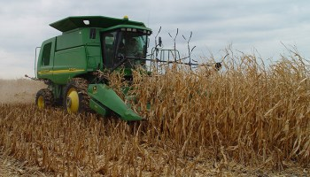 Combine harvests corn stover.