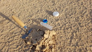 Trowel and collection tools sit in a dry desert.