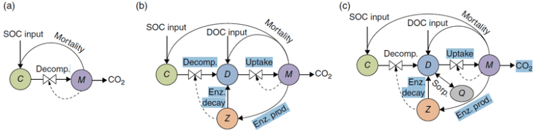 Series of three figures showing the structure of microbial decomposition models.