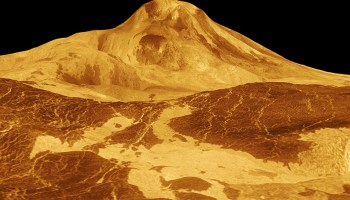 The 9-kilometer-tall volcano Maat Mons, shown here with an exaggerated vertical scale, may be relatively young.