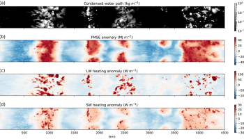 Set of four maps showing condensed water path, frozen moist static energy anomaly, longwave heating anomaly, and shortwave heating anomaly from the 300 K sea surface temperature simulation at day 100.