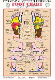 foot massage therapy diagram wiring for lights uk ingram reflexology hand or chart 22