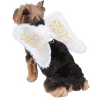 Zack & Zoey Angel Wings Harness Dog Costume - Large ...