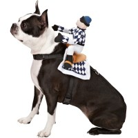 Zack & Zoey Show Jockey Saddle Costume - Medium | EntirelyPets