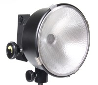 Lowel Lighting Lowel DP Light D2-10 Film Video - BarnDoor