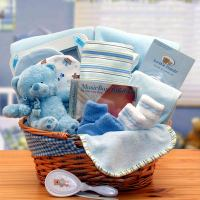 New Baby Gift Baskets - Simply The Baby Basics New Baby ...