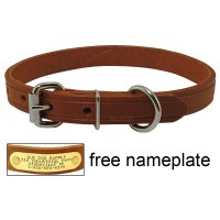 3/4 in. Leather Standard Puppy / Small Dog Collar. $5.99.