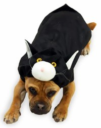 Doggone Cat Dog Costume - SMALL