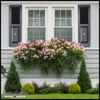 Custom Designer Shutters, Exterior Window Shutters | Hooks ...