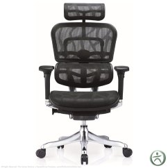 Raynor Ergohuman Chair Best Office Support Cushion Shop Ergo Elite Chairs With Headrest Me22erglt