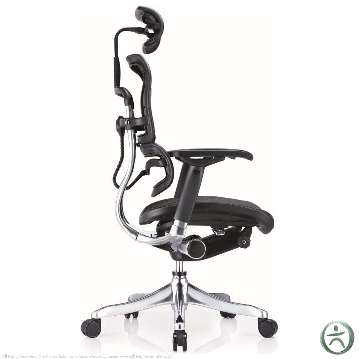 raynor ergohuman chair pottery barn patterson shop ergo elite chairs with headrest me22erglt
