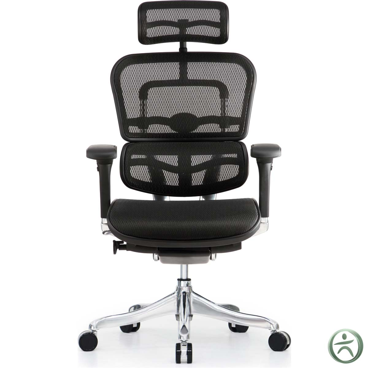 raynor ergohuman chair gaming steel frame shop ergo elite chairs with headrest me22erglt
