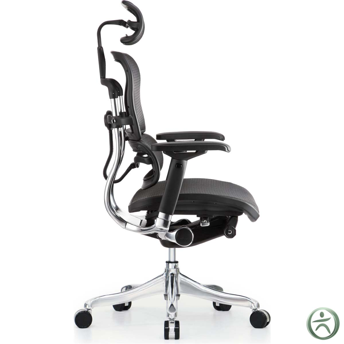 raynor ergohuman chair design meaning shop ergo elite chairs with headrest me22erglt