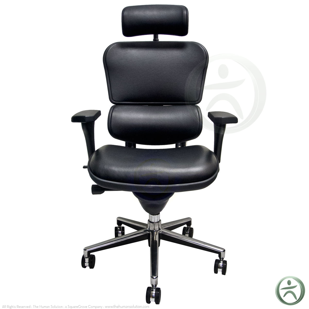 Raynor Chairs Shop Raynor Ergohuman Chairs Leather With Headrest Le9erg