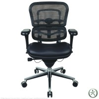 Raynor Ergohuman Chair - Mesh Chair with Leather Seat ...